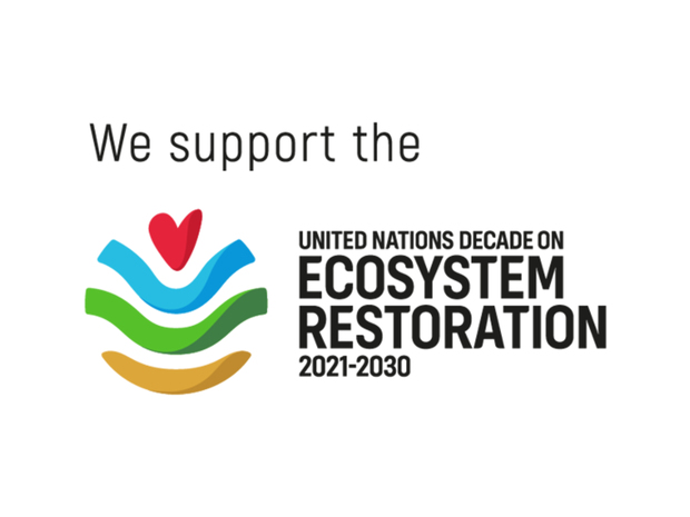 News 20 202021 20 20un 20decade 20on 20ecosystem 20restoration