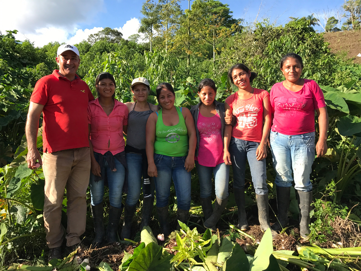 Projects   alternative sustainable livelihoods in the amazon   2017   1